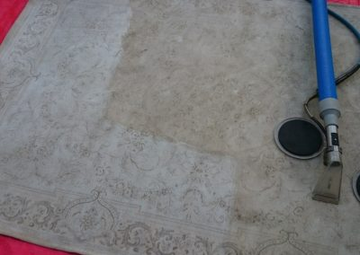 Delicate rug being cleaned