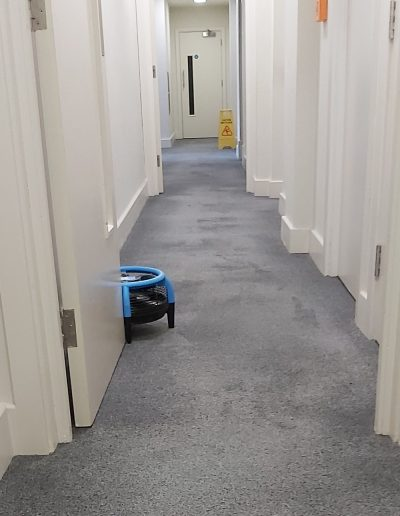 Fast drying communal hallway carpets
