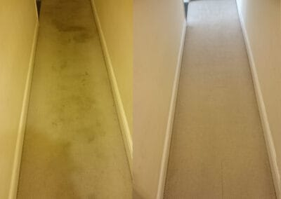Hallway carpet dirty then clean after